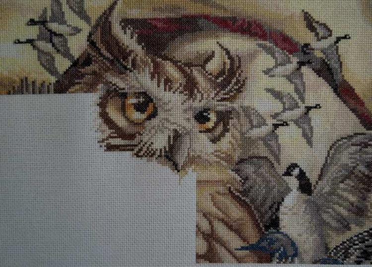 Вышивка птичий совет 36