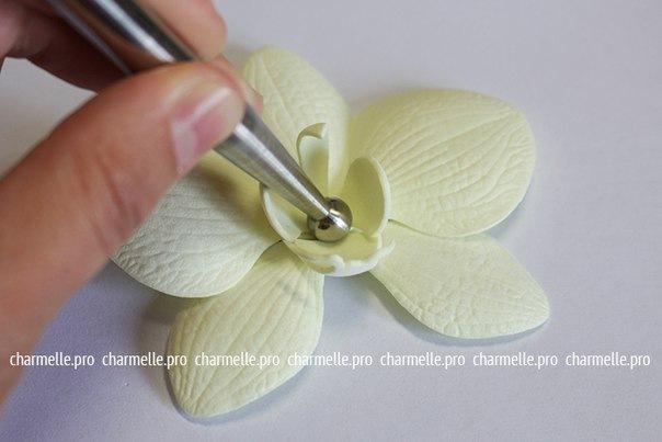 Как из фома сделать орхидею